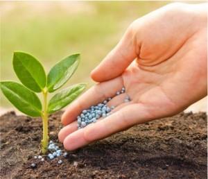 Imagem de Terra e Fertilizante
