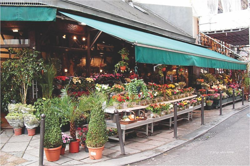 Floriculturas