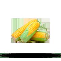 Imagem do menu para Milho