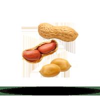 Imagem do menu para Amendoim