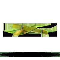 Imagem do menu para Cana