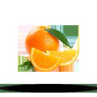 Imagem do menu para Citrus