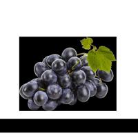 Imagem do menu para Uva