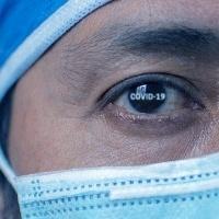 Laboratório agrícola lidera descoberta contra coronavírus
