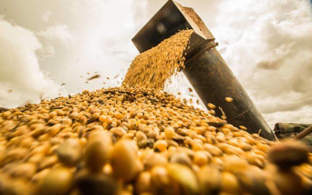 China já compra soja 2022: Hora de aproveitar?