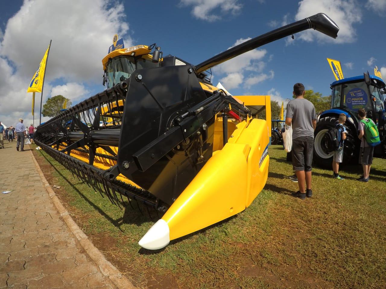 Brasil precisará elevar as importações de arroz