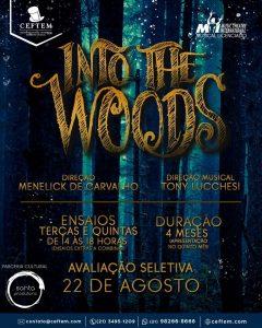 Ícone Notícia Vem aí, Into the Woods, a nova Prática de Montagem do CEFTEM