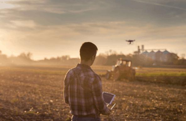 Rotação de culturas: Como aplicar a técnica na sua lavoura