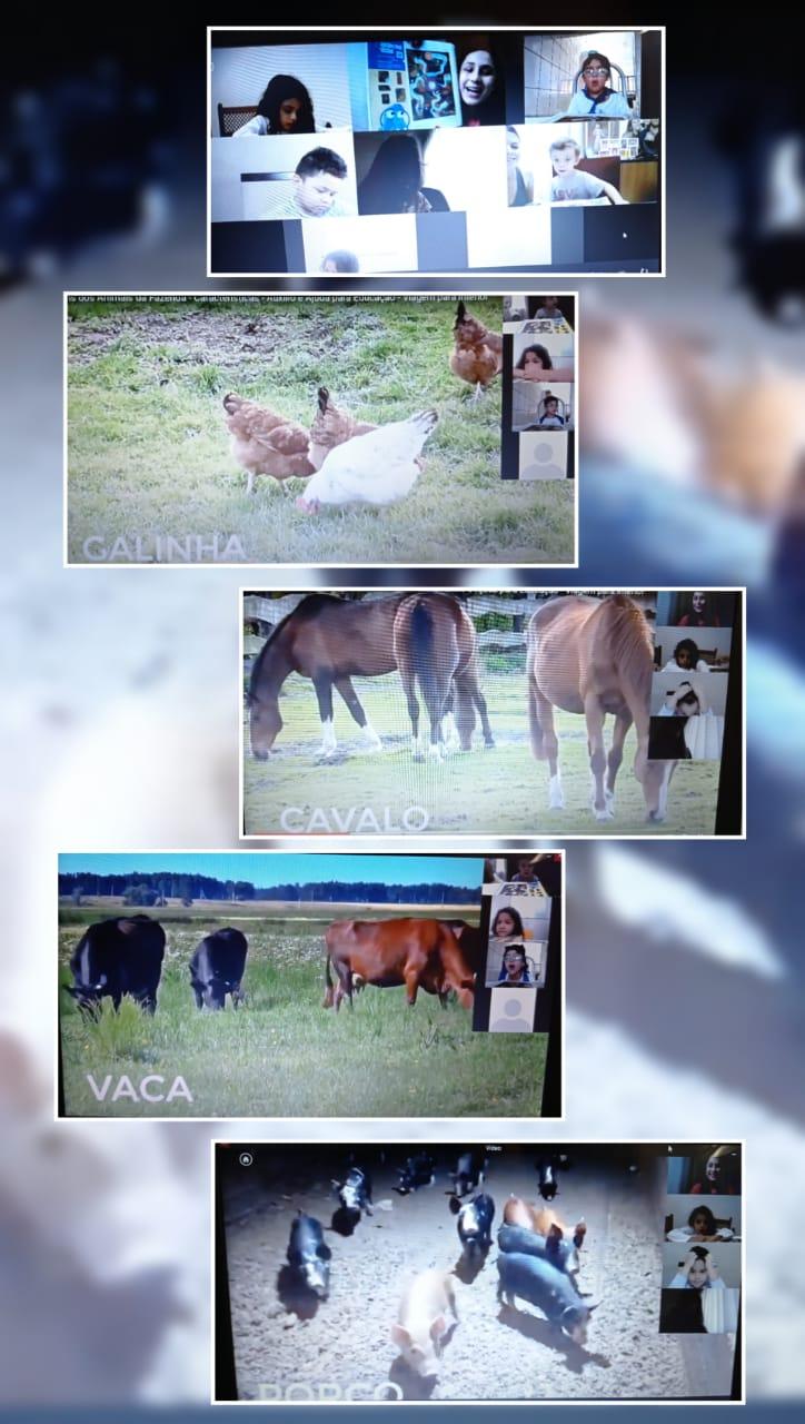 Imagem de Animais da fazenda